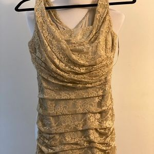 NWT Express nude lace dress